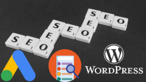 Professional SEO services/